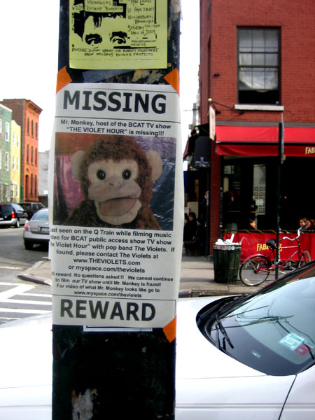 Missing Monkey