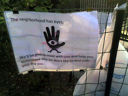 The Neighborhood Has Eyes