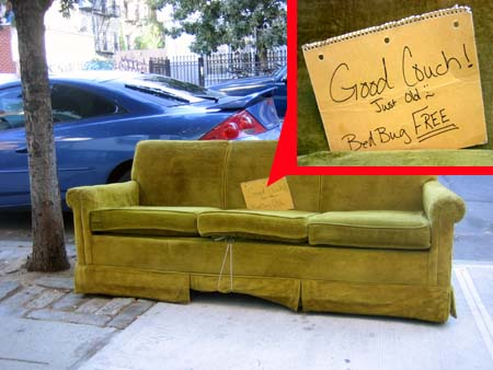 145 N. 9th Street Couch
