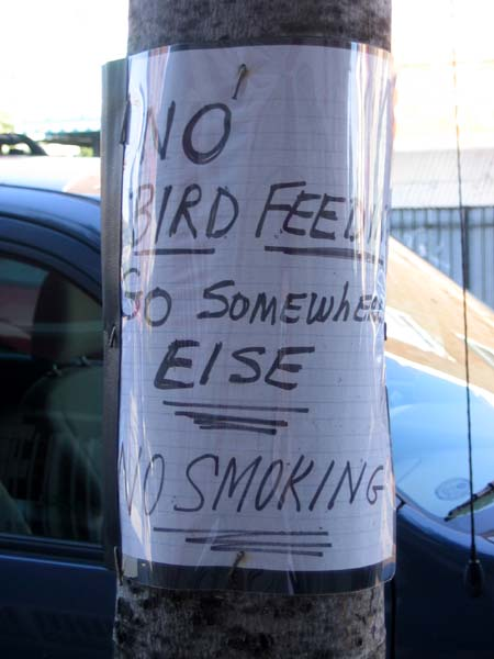 No bird feeding!