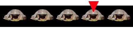 4 bunkers