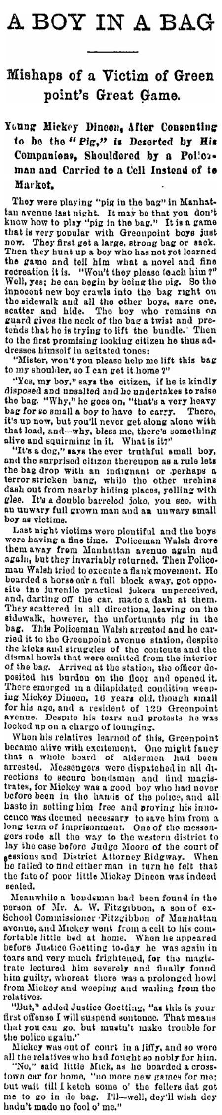 Brooklyn Daily Eagle 8/29/1891
