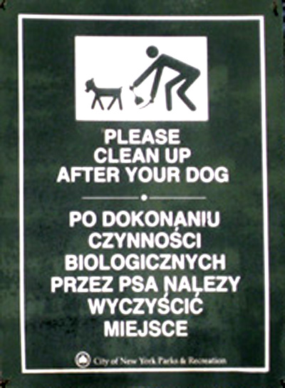 Poopie Po Polsku
