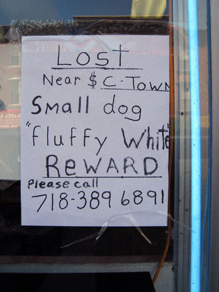 Lost near C-Town