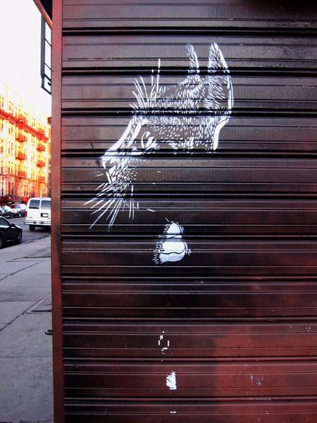 streetcatnys