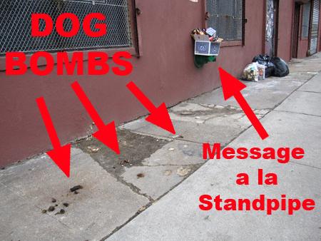 dogbombs