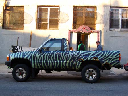 zebratruck