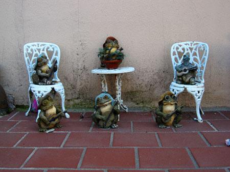 turtlesandfrogs