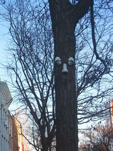 tree1REV