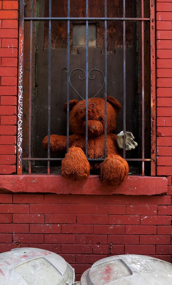 teddy6142013
