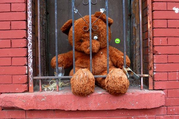 Teddy 1