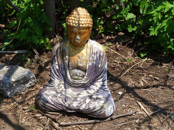 Transmitter Park Buddha 600