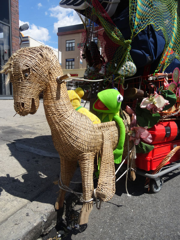 Horse and Kermit nys
