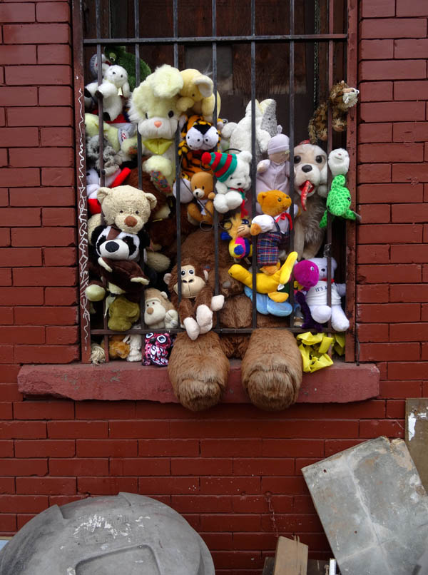 Prison Bear and friends nys